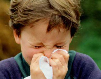 5 receitas com gengibre para as crianças
